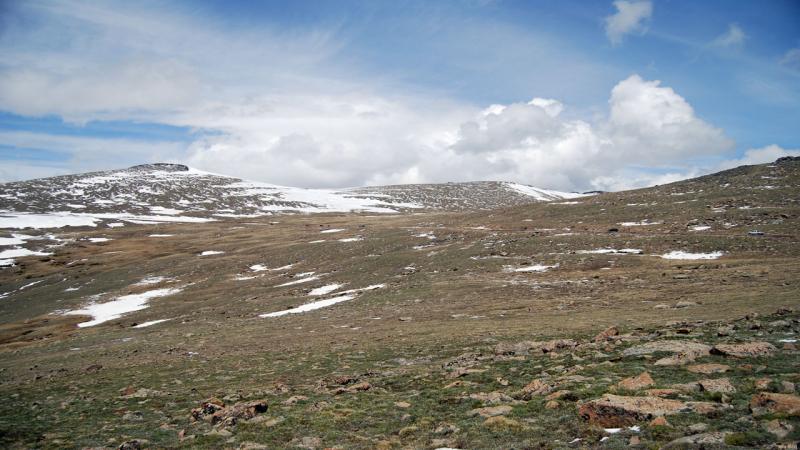 Alpine Drive