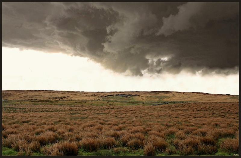 Storm 15