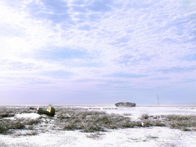 Coastal Winter