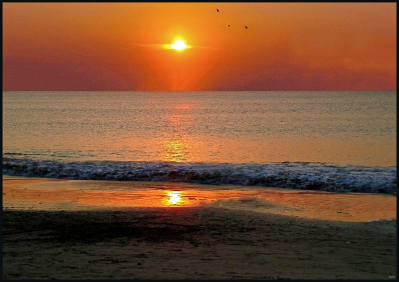 Sunset 22