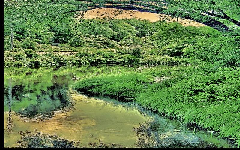 quite stream