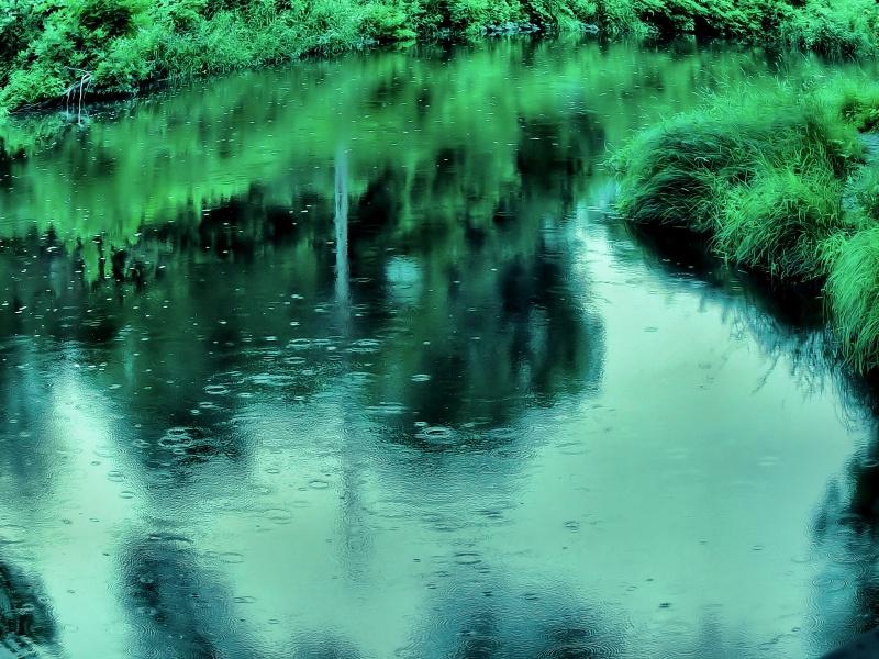 Meditative Stream
