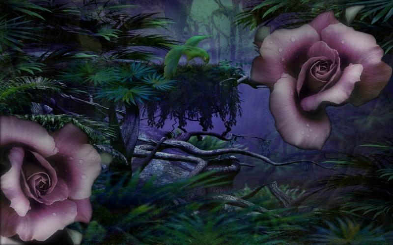 Jungle Rose_vista