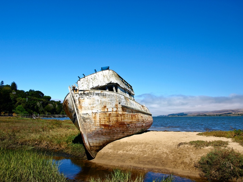 Shipwrecked in the bay of Tomales