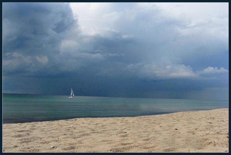 Storm 16