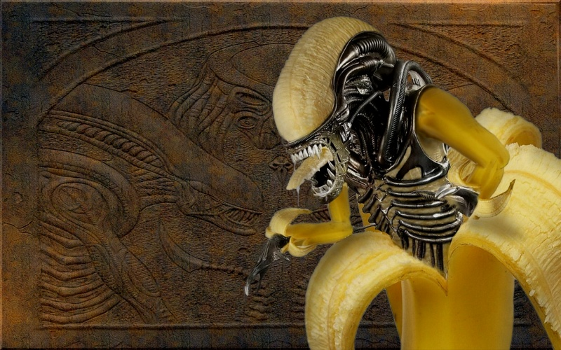 Alien Banana_vista