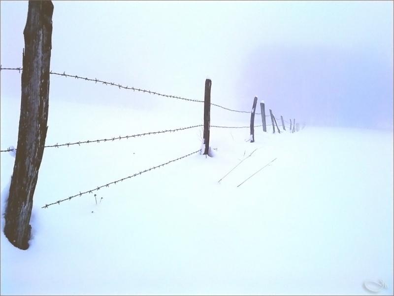 Neige en-champ-temps
