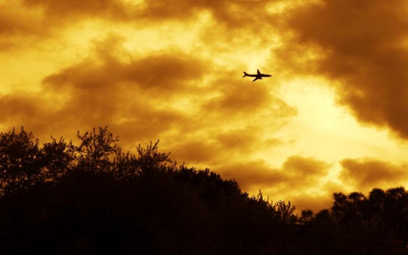 Phoenix Takeoff