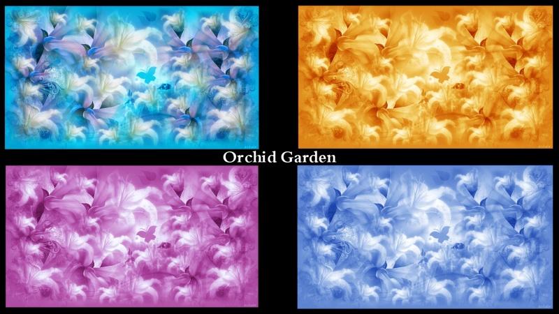 Orchid Garden Walls 4pk