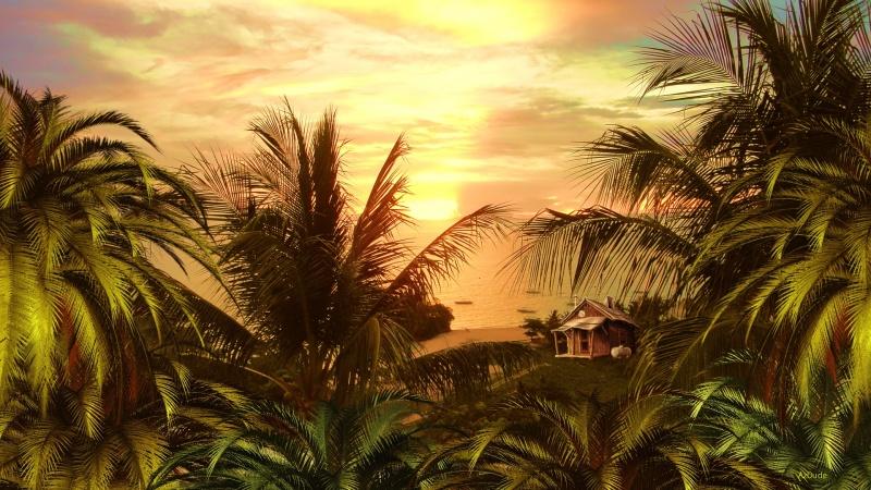 Island Shack Logon