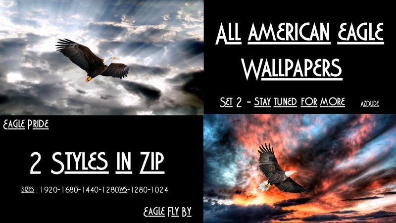 All American Eagle Walls  Set 2