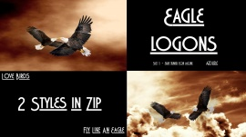 Eagle Logons Set 1