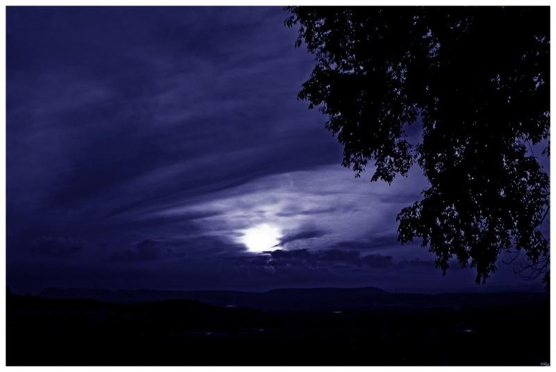 Moonlight 16