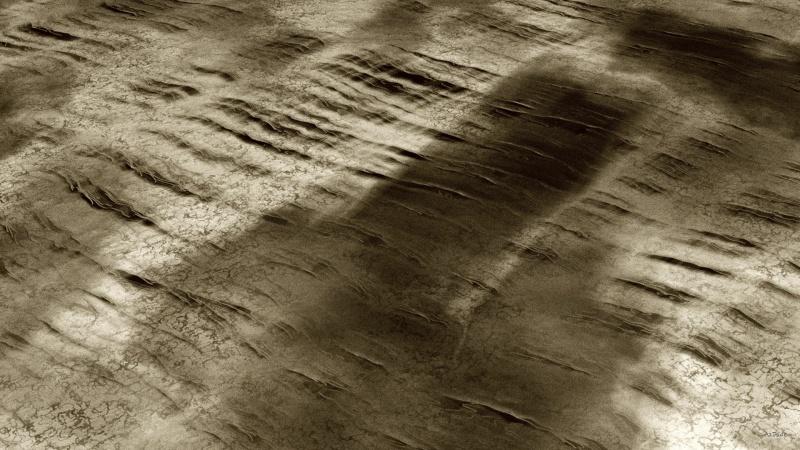 Wet_Dry Sand
