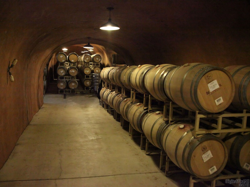 Wines Aging