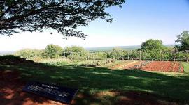 Jeffersons Vegetable Garden