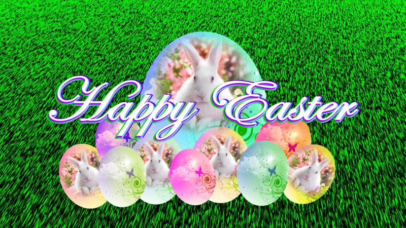 Easter Bunny Eggs Logon