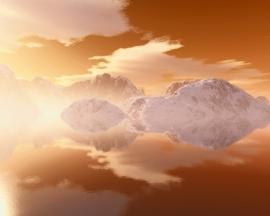 Orange Arctic