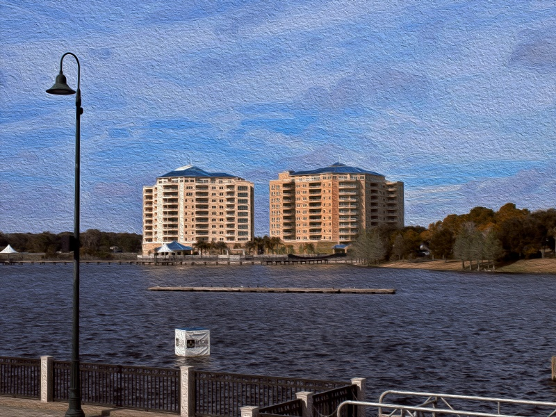 Cranes Roost in Oil