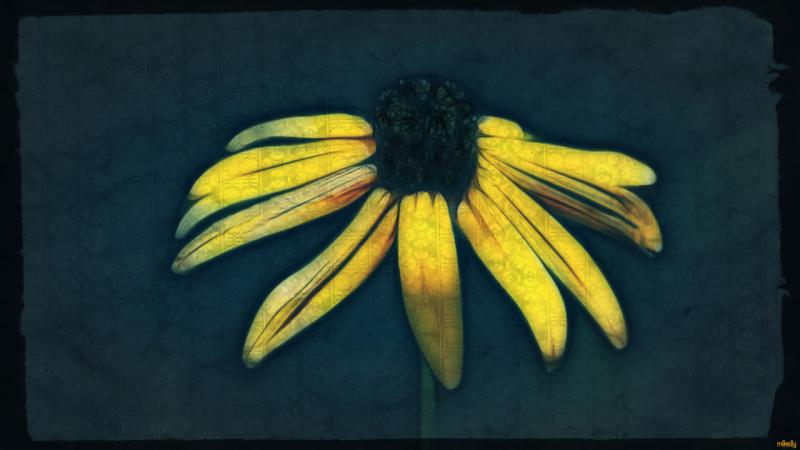 Parchment paper flower