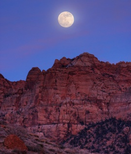 Full Moon Over Zion