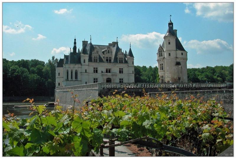 Castle 15