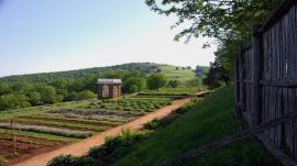 Gardens at Jefferson´s Monticello