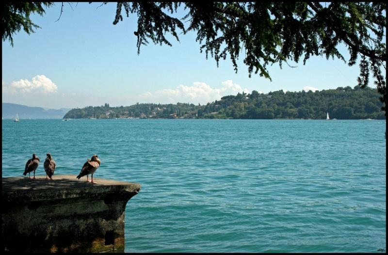 Lake 35