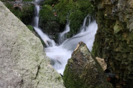 Dunnings Springs 1