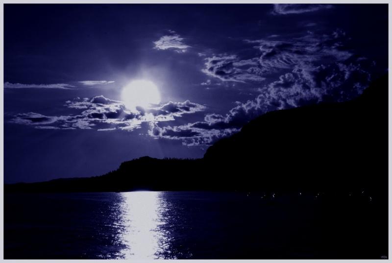 Moonlight 14