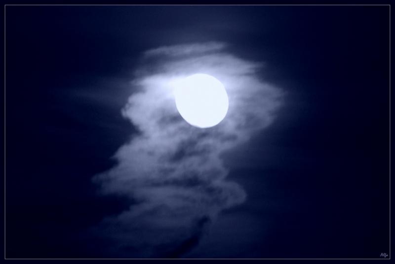 Moonlight 17