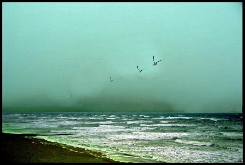 Sea and sky 16