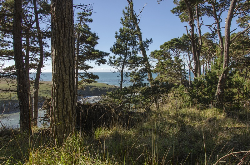 Salt Point State Park