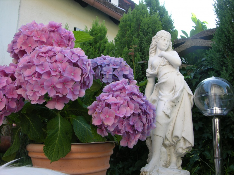 Flowers and Small Statue