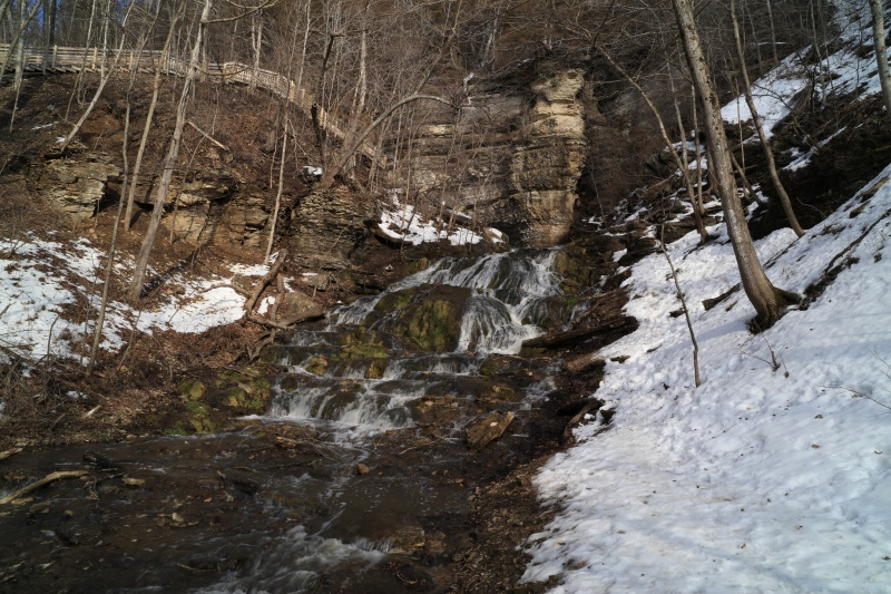 Dunning´s Springs 2-20-16