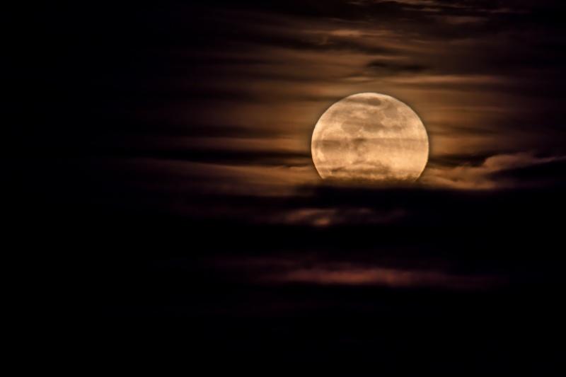 Moonrise 1-31-18