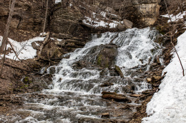 Dunning´s Springs, March 17, 2019