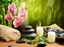 Full Body to Body Massage Parlor in Nehru Place Delhi