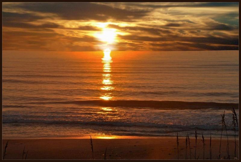 Sunset 31
