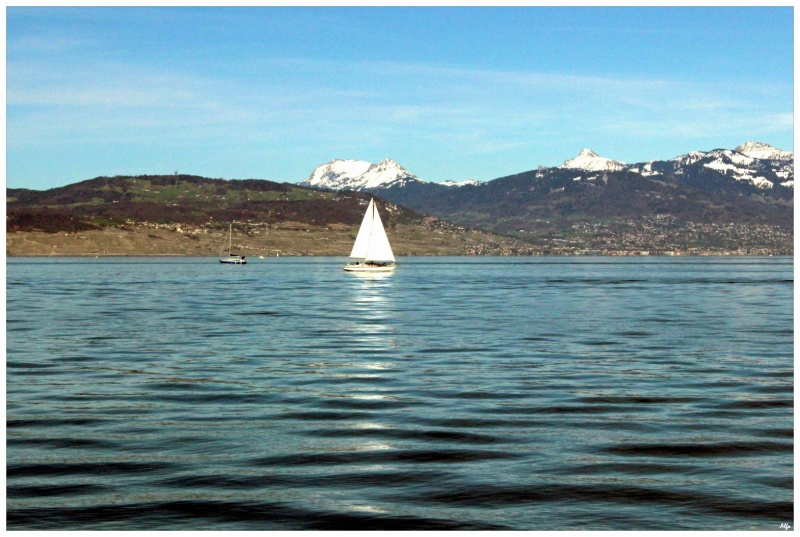 Lake 42