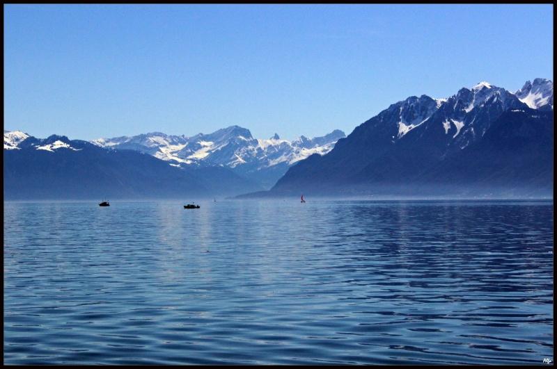 Lake 41
