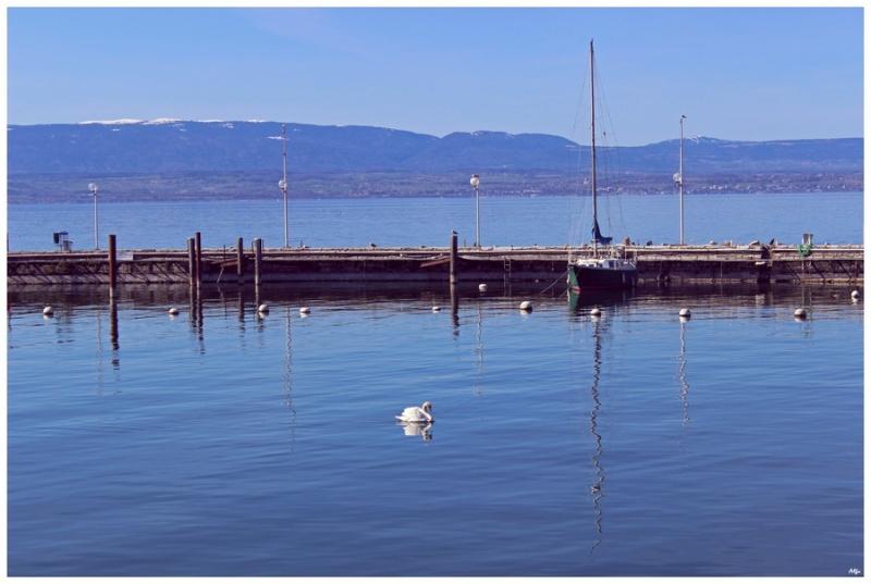 Lake 46