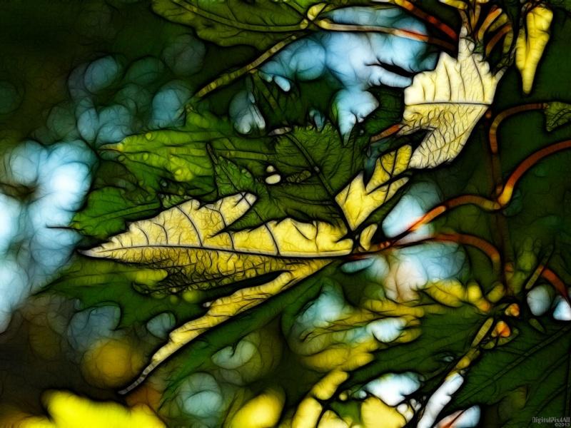 Leafy Maze