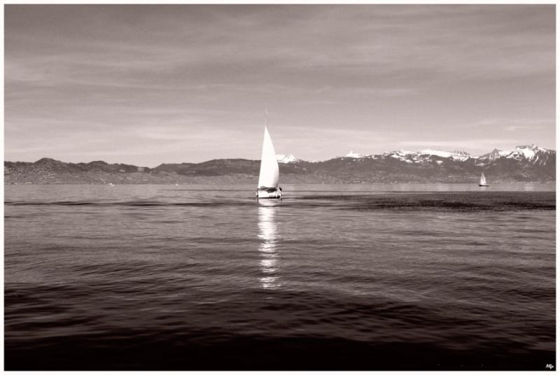 Lake 49