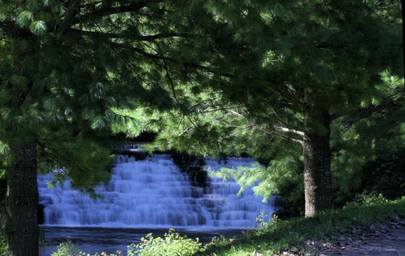 Trout Stream Falls