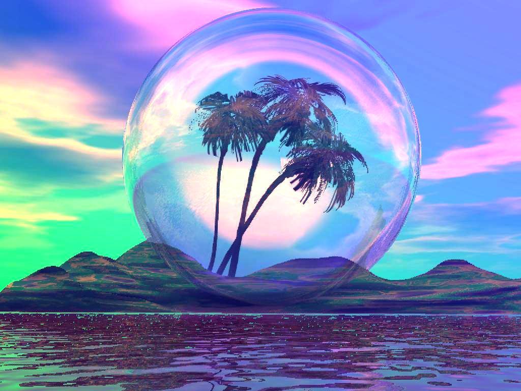 A Tropical Dream